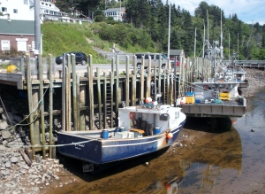 The fishing boats were in as the tide was out at Hall's Harbour, a pretty village on the Bay of Fundy Shore.