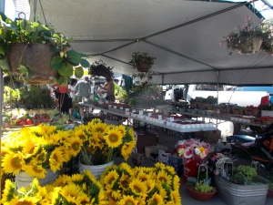The sunflowers at the Kingston Farmers' Market brought back fond memories of my parents' garden, just north of the city.