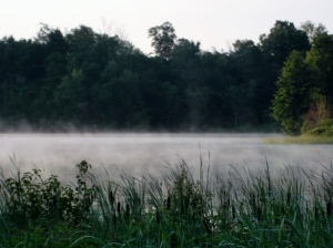 The view of early morning mist on Dog Lake from my cottage porch evoked a feeling of complete serenity.
