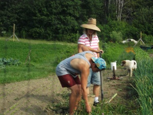 Sharon and a WWOOF volunteer tend to the organic plants with TLC.