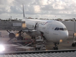 There's my Air France plane.  I am ready to board and fly away 'across the pond' to France, a land of my dreams!