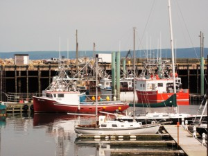 Digby Nova Scotia is a famous fishing village. It is renowned for its abundant catches of deep water scallops.