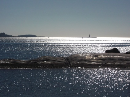 Point Pleasant Park, Halifax NS, looking out of the harbour.
